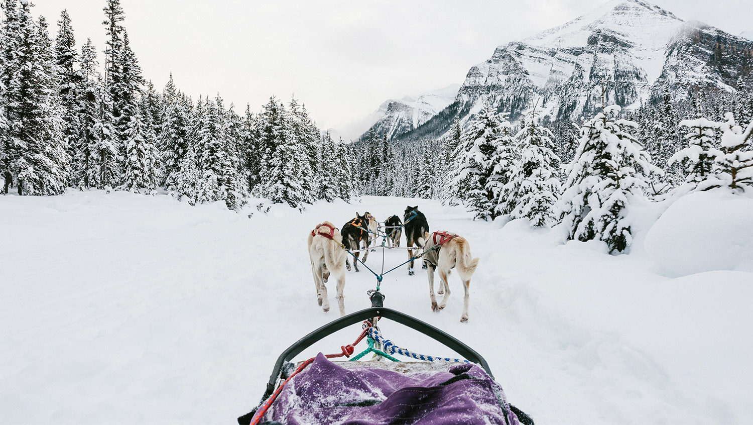 winter jobs banff